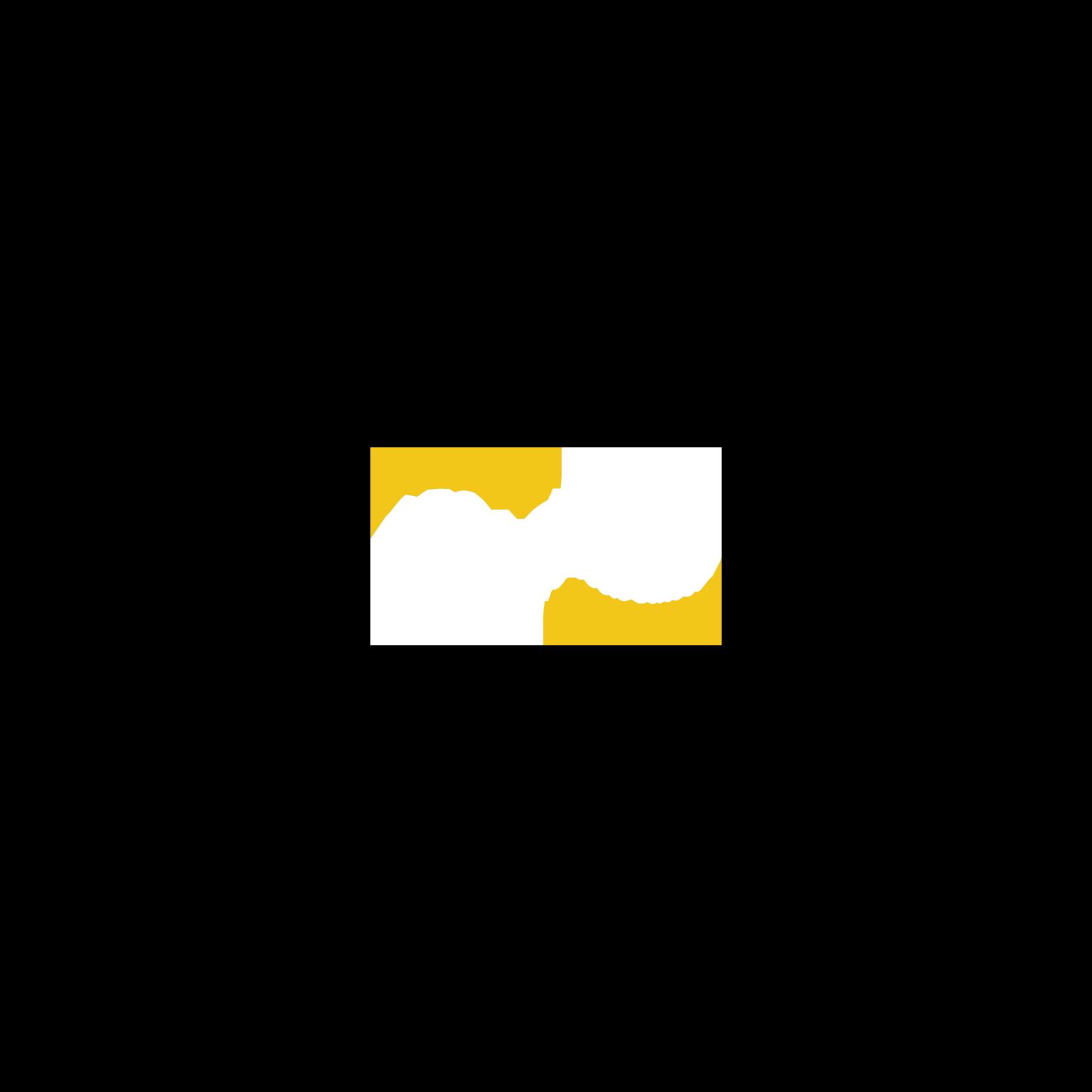 AES Academy